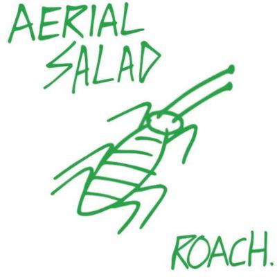 Aerial Salad Roach album cover
